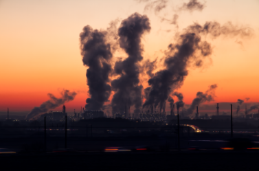 Environmental Standards in the Age of TradeLiberalization