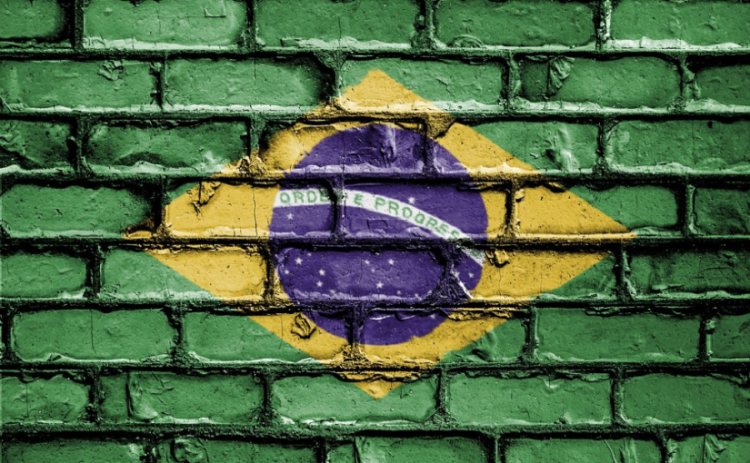 Economic Salvation: Can Privatization Prove to be Prudent forBrazil?